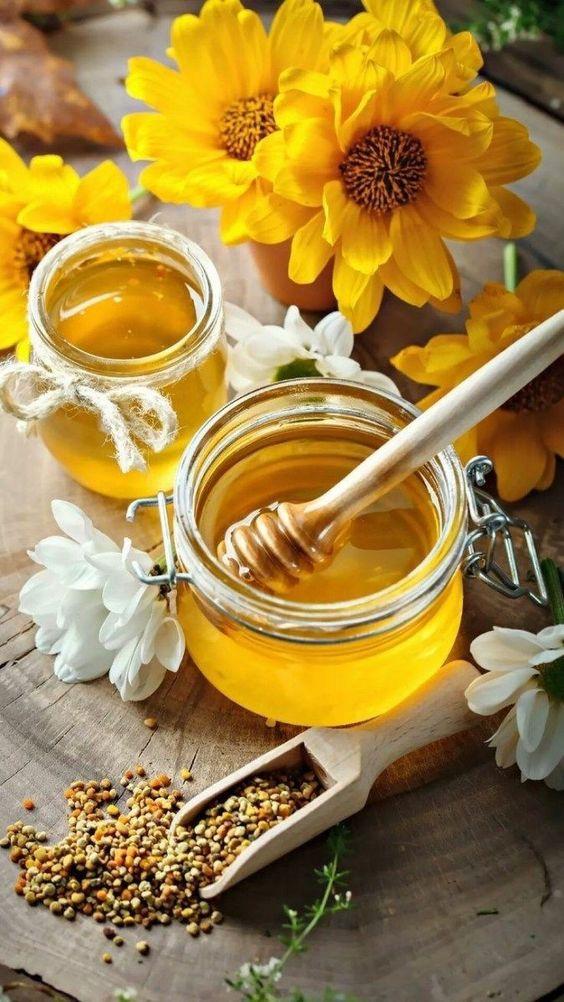🍯 Купить Подсолнечный Мёд 100% натуральный - от 50 грн | Kupit-Med